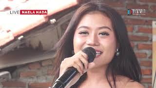 Gambar cover Melekan wadon - She sin Ta - NAELA NADA Live Samadikun Cirebon