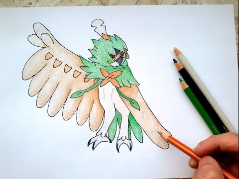 decidueye and chestnaught trying - photo #24