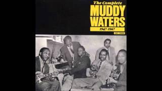 Muddy Waters, I