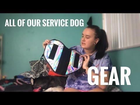 SERVICE DOG GEAR HAUL
