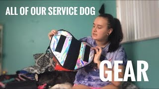 SERVICE DOG GEAR HAUL
