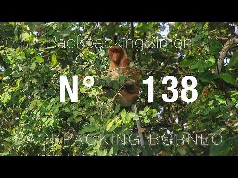 Ab in den Dschungel ! Borneo Malaysia / Weltreise Vlog / Backpacking #138