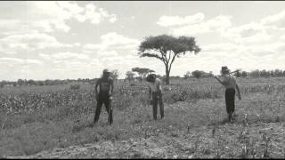 Jah Prayzah Feat Stunner Hatireve Nyambo Voltage Dance