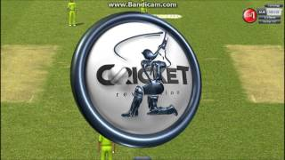 Cricket revolution - batting gameplay