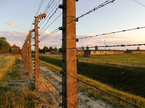 72nd Anniversary of the  Liberation of the Nazi camp in Auschwitz- Birkenau - Part II (C)