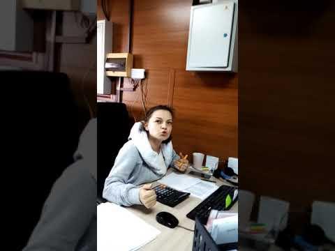 Хамка-лилипутка в бухгалтерии ТК Энергия г.Красноярск