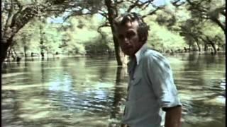 18 - Одиссея Жака Кусто -  Нил 2