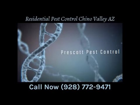 Residential Pest Control Chino Valley AZ