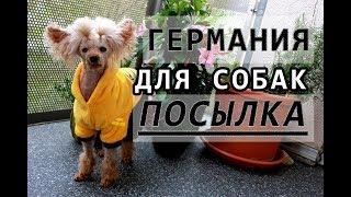 ❤ ОГРОМНАЯ ПОСЫЛКА для СОБАК ❤ той ПУДЕЛЬ писает на ЛОТОК ❤ чем кормить собак