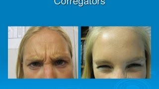 Cosmetic procedures - Before and After - Las Vegas Dermatology Thumbnail