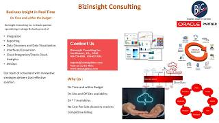Bizinsight Consulting Sales Brocher 2017...