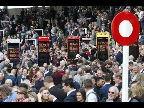Betting on British and Irish horse racing: Sunday Forum special