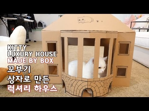 DIY 상자로 만든 고양이 럭셔리 하우스 CAT LUXURY HOUSE MADE BY BOX