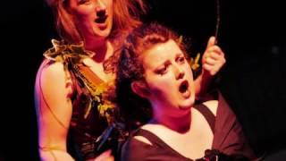 The Nightingale and the Rose, Scene 5 (Shadow Opera)