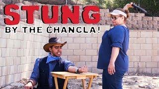 Stung by the Chancla! | David Lopez