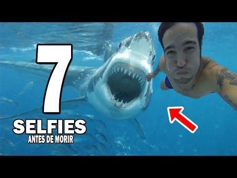 7 Selfies que Fueron Tomadas Antes de Morir