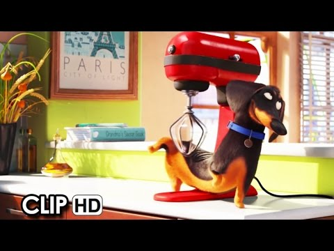 Meet Buddy From The Secret Life Of Pets 2016 Hd Youtube