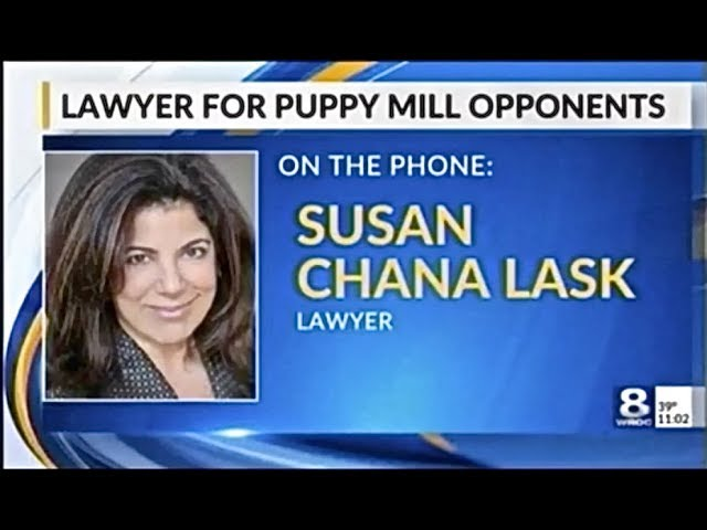Lask Stops Massive NYS Puppy Mill