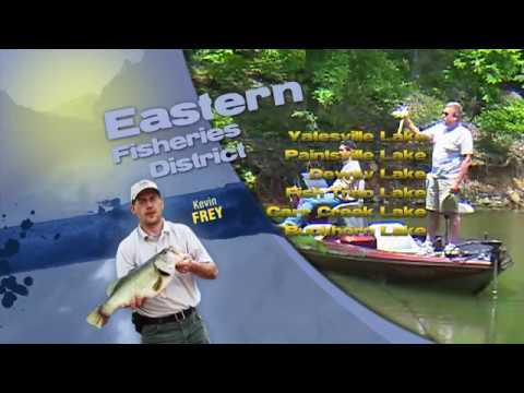 Fishing Report - January 27, 2018