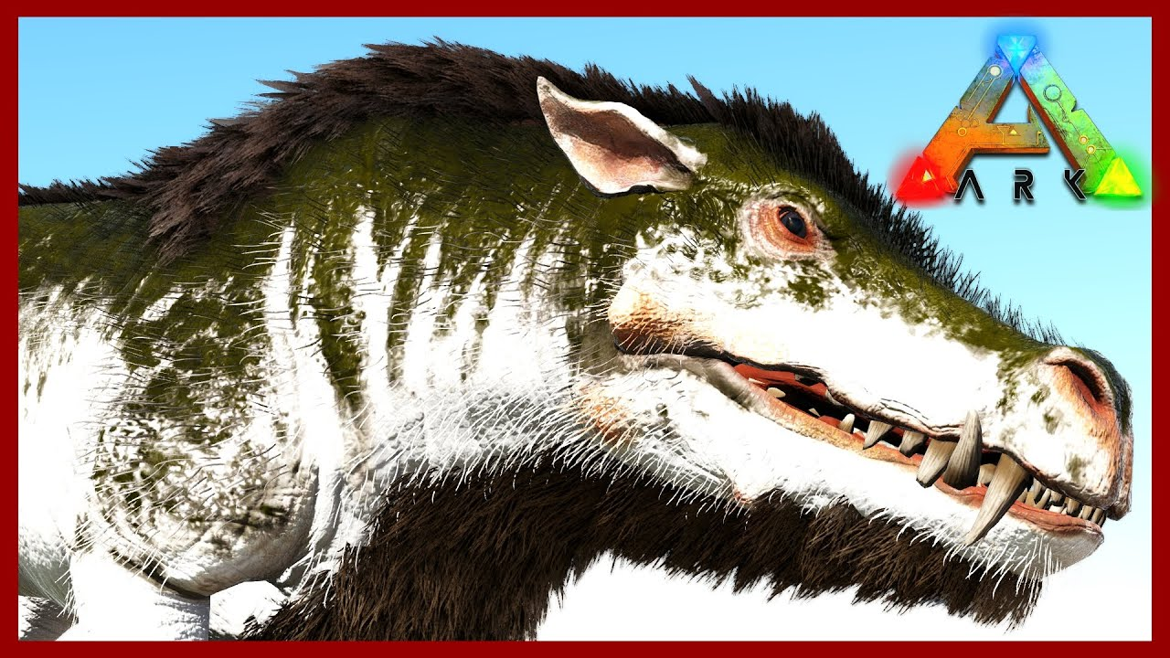 Creature Storage Daeodon Taming The Island Map Ark Survival Evolved Ep 34 Youtube Survival evolved) daeodon taming + location scorched earth! creature storage daeodon taming the island map ark survival evolved ep 34