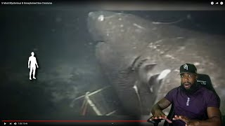 THEY GOT IT ON 4k! 5 Most Mysterious & Unexplained Sea Creatures