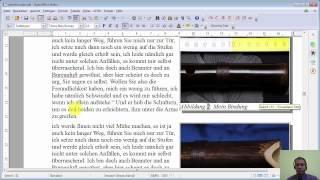 Film #009 OpenOffice 4.1.1 Writer ::: Fußzeilen & Seitenzahl
