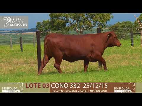 LOTE 03 CONQ 332
