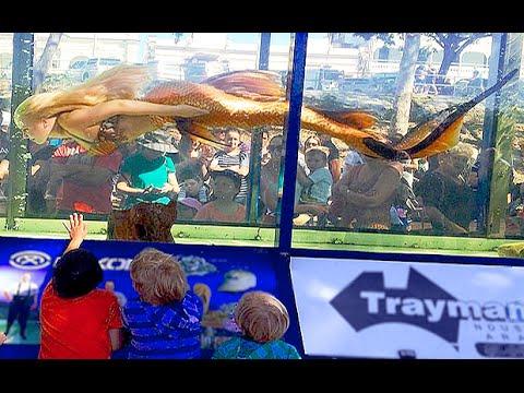 Mermaid Melissa In A Giant Fish Tank Aquarium
