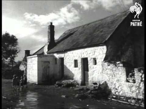 Ennis (1949)