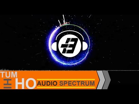 TUM HI HO REMIX (Audio Spectrum Edited)