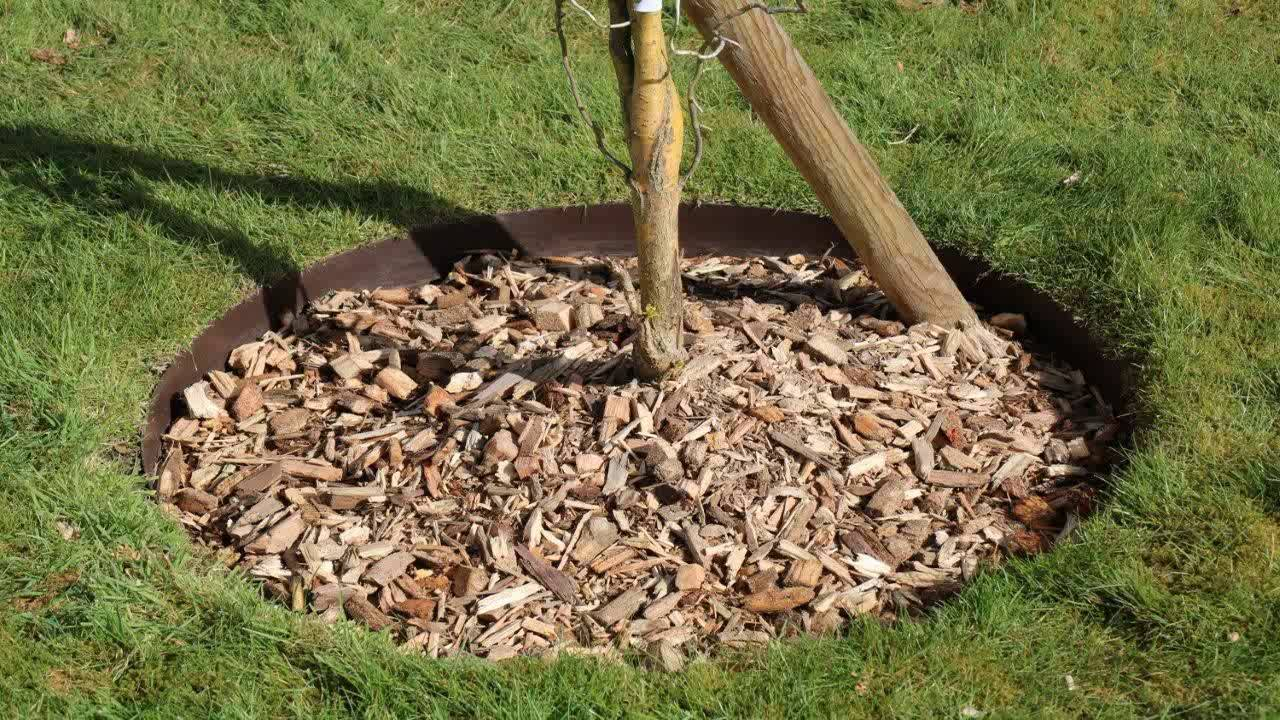 EverEdge Steel Lawn Edging 4 Brown - YouTube