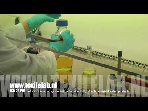 ISO 22196 antibacterial activity Video