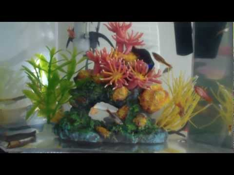 sample-video-from-samsung-hmx-qf20-1080i