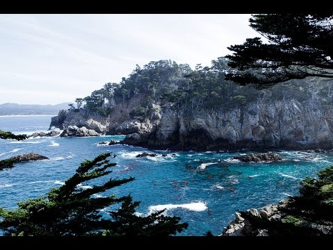 Photo Walk with Outdoor Photographer at Point Lobos