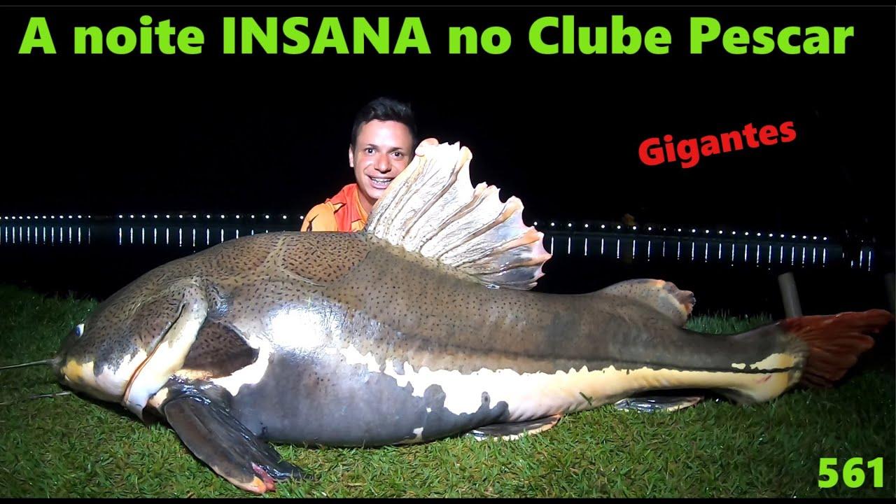 Clube Pescar - A noite INSANA com os gigantes - Fishingtur na TV 561