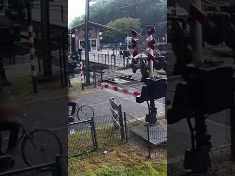 Woman ignores train barriers, nearly gets hit #shorts