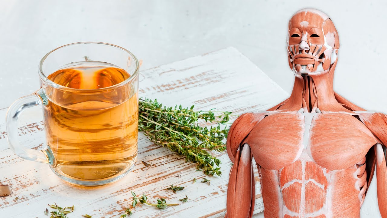 What Happens To Your Body When You Drink Thyme Tea