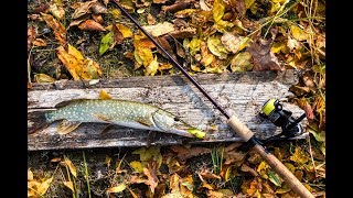 рыбалка в окрестностях Волгограда 2019