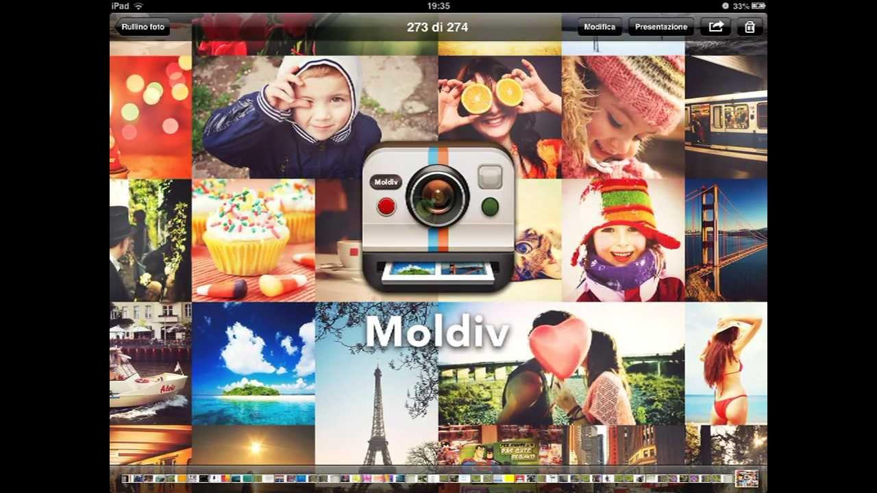 Картинки по запросу MOLDIV™