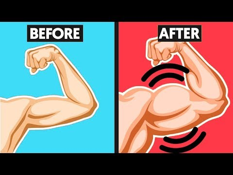 top-5-muscle-building-tips-(for-beginners)