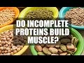 Do Incomplete Proteins Build Muscle & Should You Count Them?