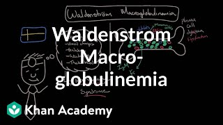 What is waldenstrom macroglobulinemia? | Hematologic System Diseases | NCLEX-RN | Khan Academy