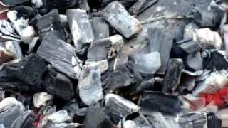 Шашлыки на Верхнем бору в Тюмени.