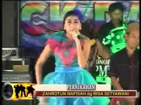 Dangdut Jamaika   Elsa Safira    Dangdut Koplo New Bintang Yenila Terbaru 2015 2016