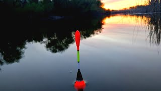Рыбалка с ночевкой ПОПАЛИ НА ЖОР КАБАНОВ в Апреле