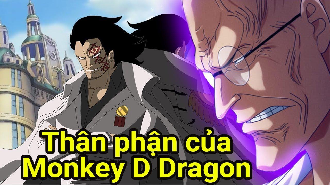 Thân phận của Dragon, Hải quân hay CP0, mục tiêu của ông ta, giả thuyết one piece