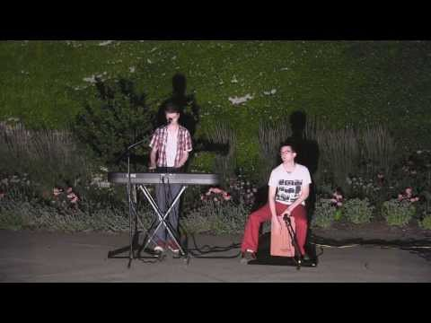 """The Peaks"" - Everything, Everything (LettersToFallbloom Cover)"