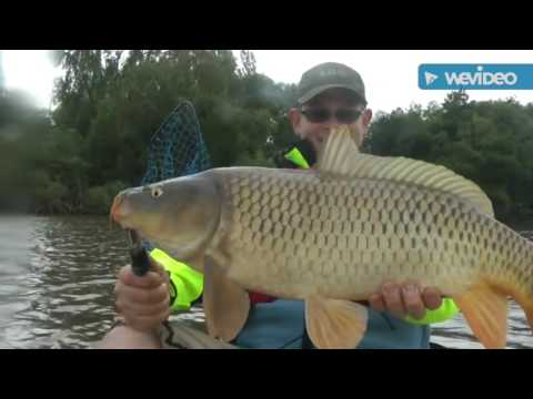The BEST Fishing Locations For BIG Carp In Canberra