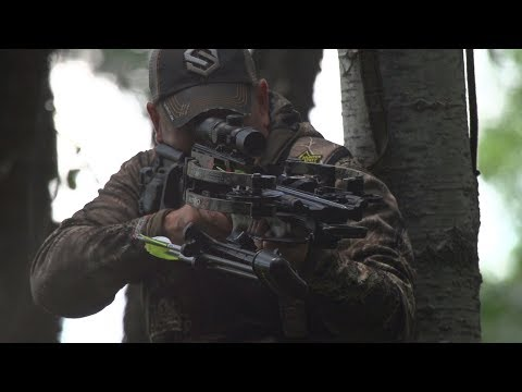 Crossbow Hunting: Smart Prep & Shooting Practice