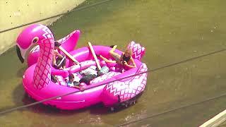 По реке на фламинго